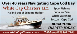 Cape Cod Bay Charters